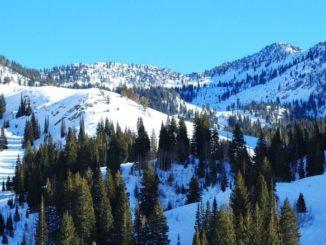 meteo montagne previsions ski neige sapin